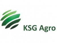 KSG Agro в 2019 році збільшить в 2 рази потужність цеху з виробництва паливних пелет